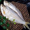 鳓鱼的做法